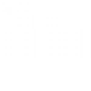 Compagnies Financières